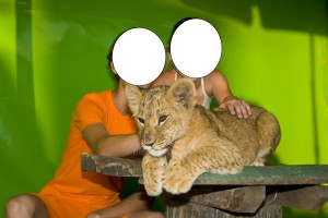 Lion Cub Photo with Kids